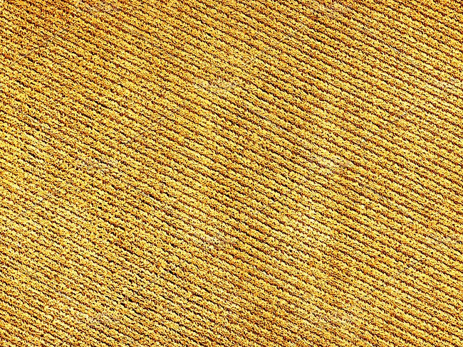 Woven Fabric Analysis Texture