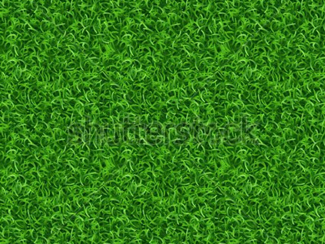 green meadow texture