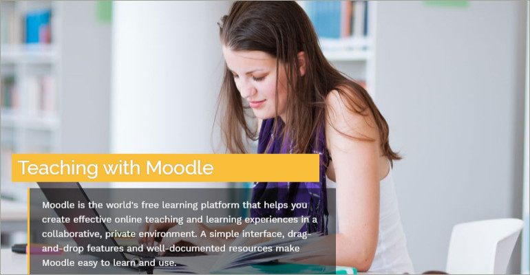 Professional Moodle Themes
