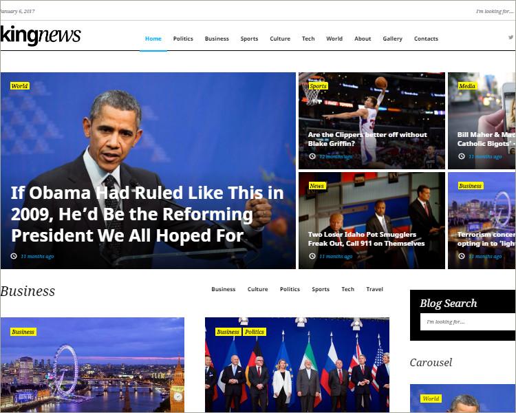 news portal business wp theme