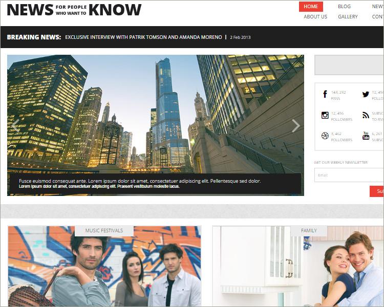 news website wp theme