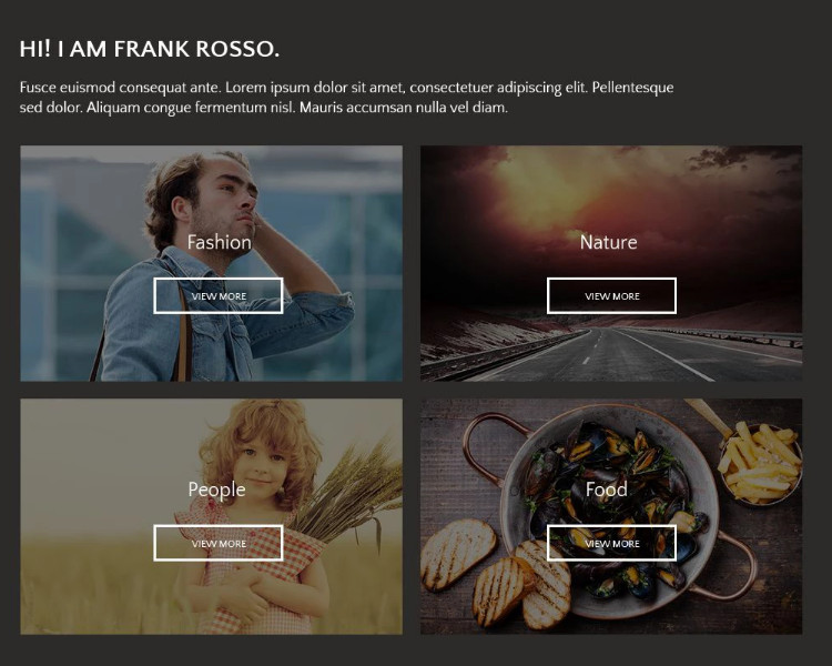photographer portifolio theme