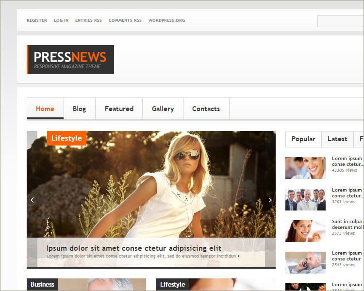 press news wp theme