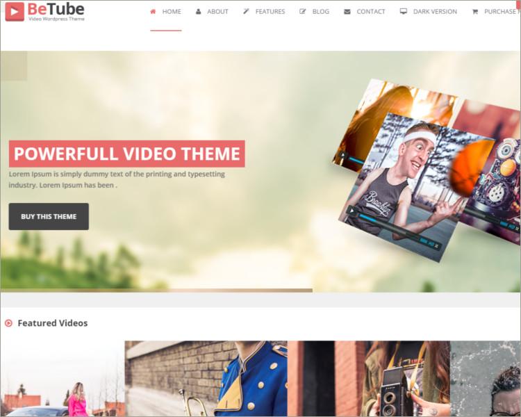 sample video blog wordpress theme