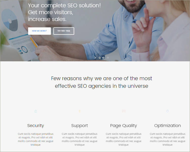 seo wordpress template