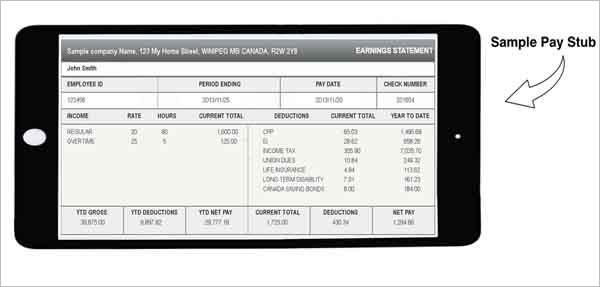 Canadian Paycheck stub generator Online to use