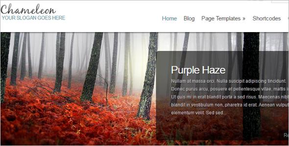 Elegant Bridge WordPresss Template