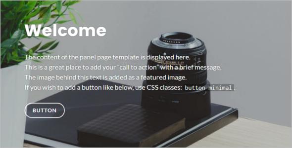 Elegant Custom Color WordPress Template