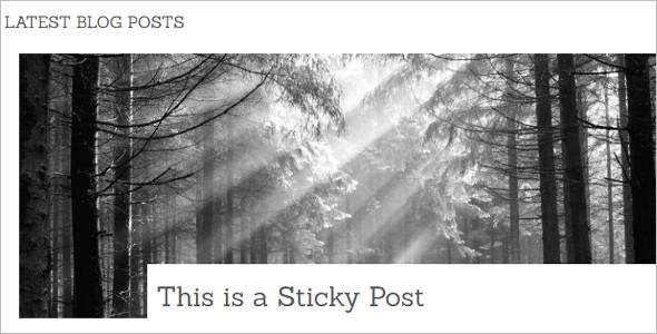 Elegant Delight WordPress Template
