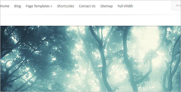 Elegant Evolution WordPress Template