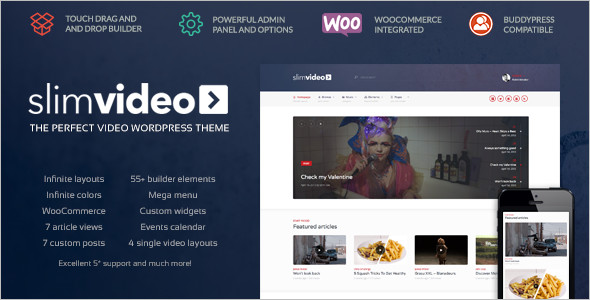 Entertainment Video WordPress Template