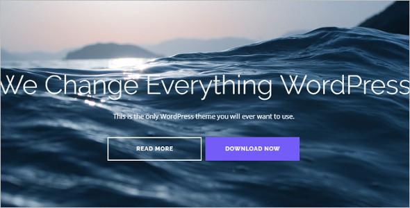 Flat Pixel Perfect Design WordPress Template