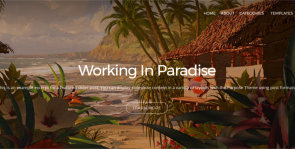 Flexiable Photo Blog WordPress template