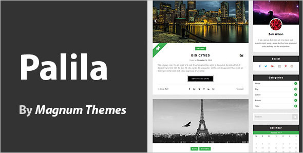 Flexible WordPress Blog Template