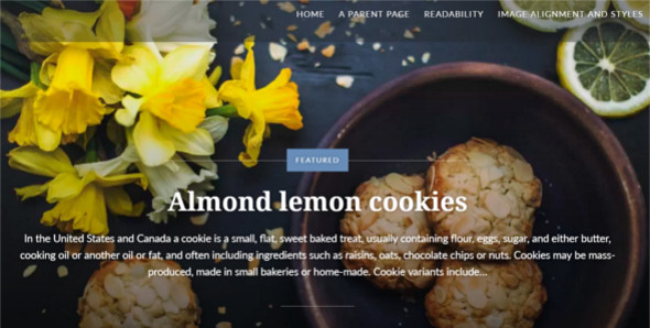 Food Blog Photo WordPress Template