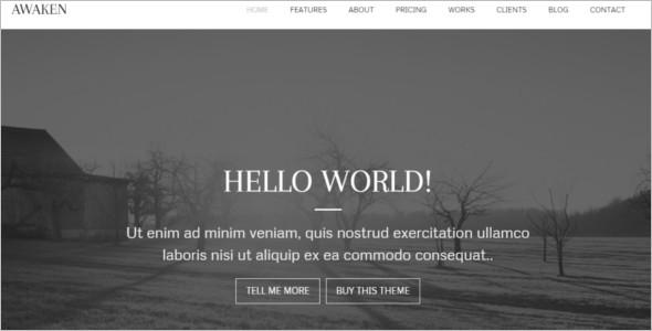 Genesis Communication WordPress Template