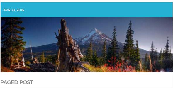 Nature Treatment WordPress Template