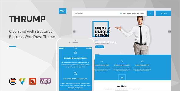 Premium WordPress Platform template