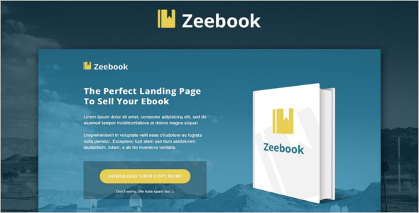 Professional Ebook landing Page Template