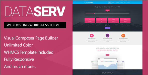 Professional Hosting WordPress template