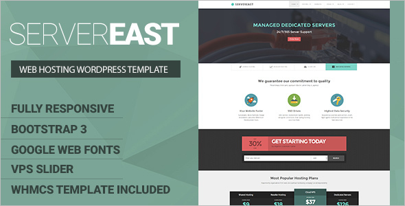 Server Hosting WordPress Template