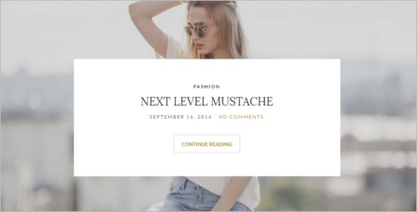 Stylish Author WordPress Theme
