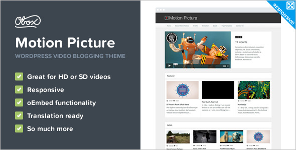 Video Picture WordPress Template