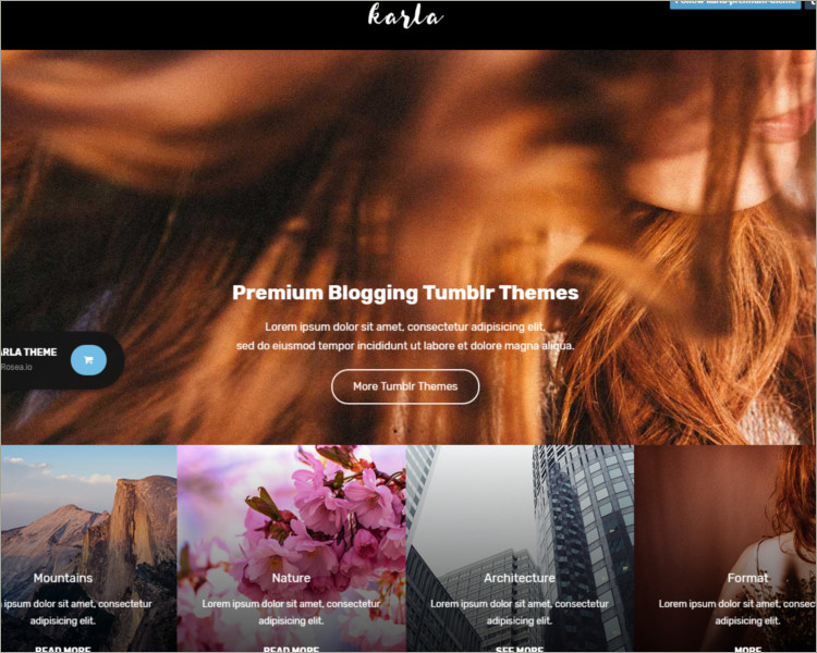 personal blog tumblr theme