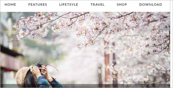 Angle Blogger Website Template