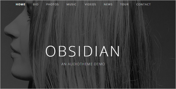 Audiotheme Music WordPress Template
