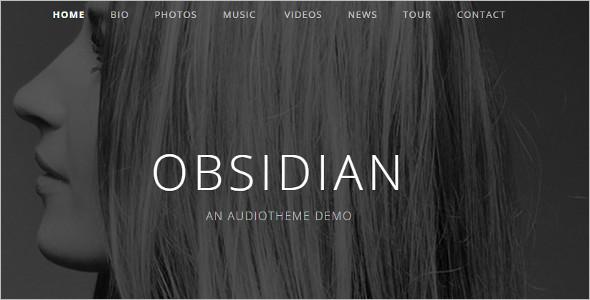 Audiotheme Music WordPress Template
