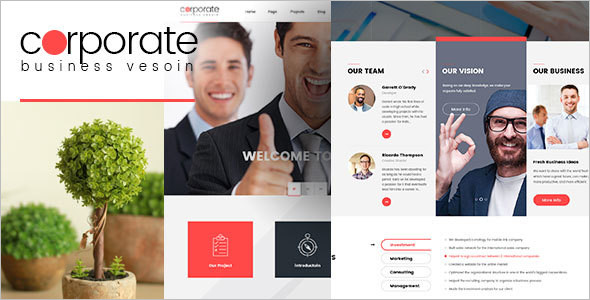 Business Version WordPress Template