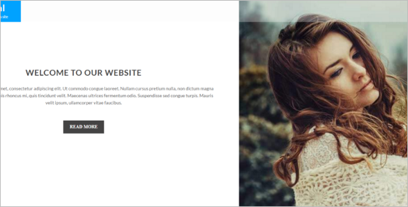 Celebraty Marketing WordPress template