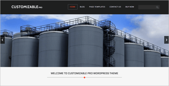 Customize Flexible WordPress Template