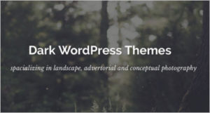 Dark wp templates