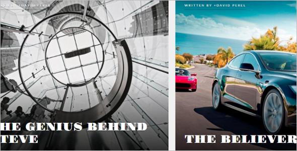Download Author WordPress Template