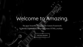 Genesis WordPress Themes