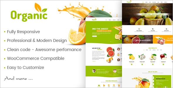 Healthy WooCommerce WordPress Template