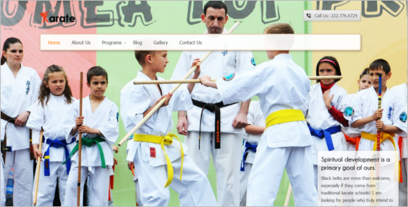 Martial Arts WordPress Plugin Template