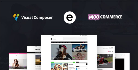 Multiconcept Blog WordPress Template