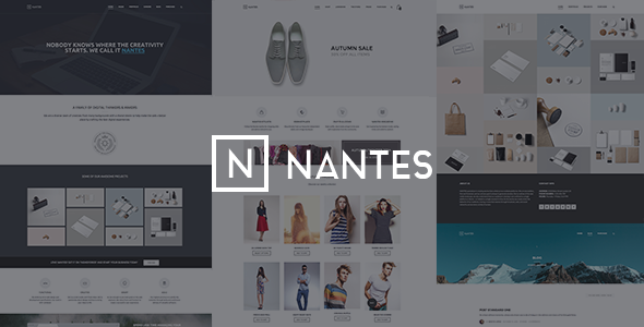 Online Store WooCommerce Themes