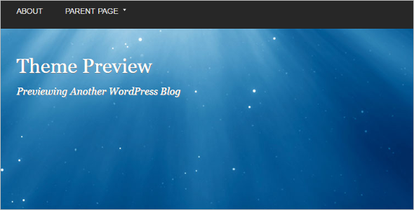 Open Source Background WordPress Template
