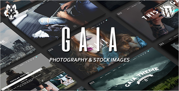 Photography Single Page WordPress template