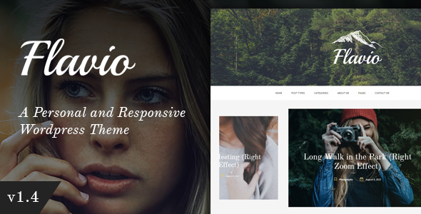 Popular Premium WordPress Template