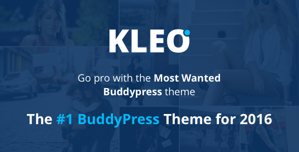 Pro Community Sell WordPress Template