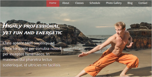 Professional Martial Arts Website Template