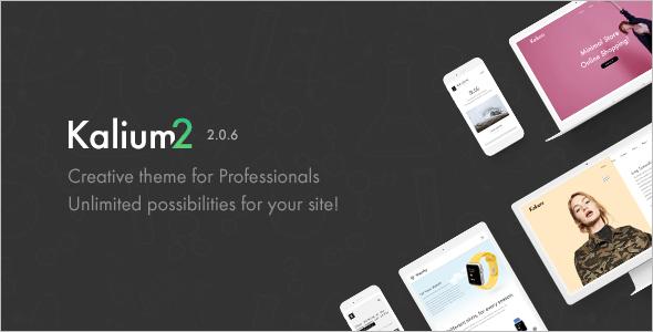 Professionals Functonal WordPress Template