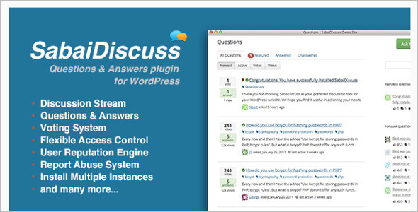 Question & Answer discussion WordPress Theme