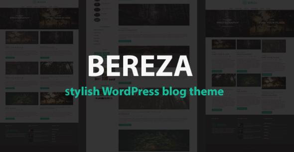 Responsive Blog WordPress Template