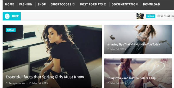 Responsive Blogger Website Template